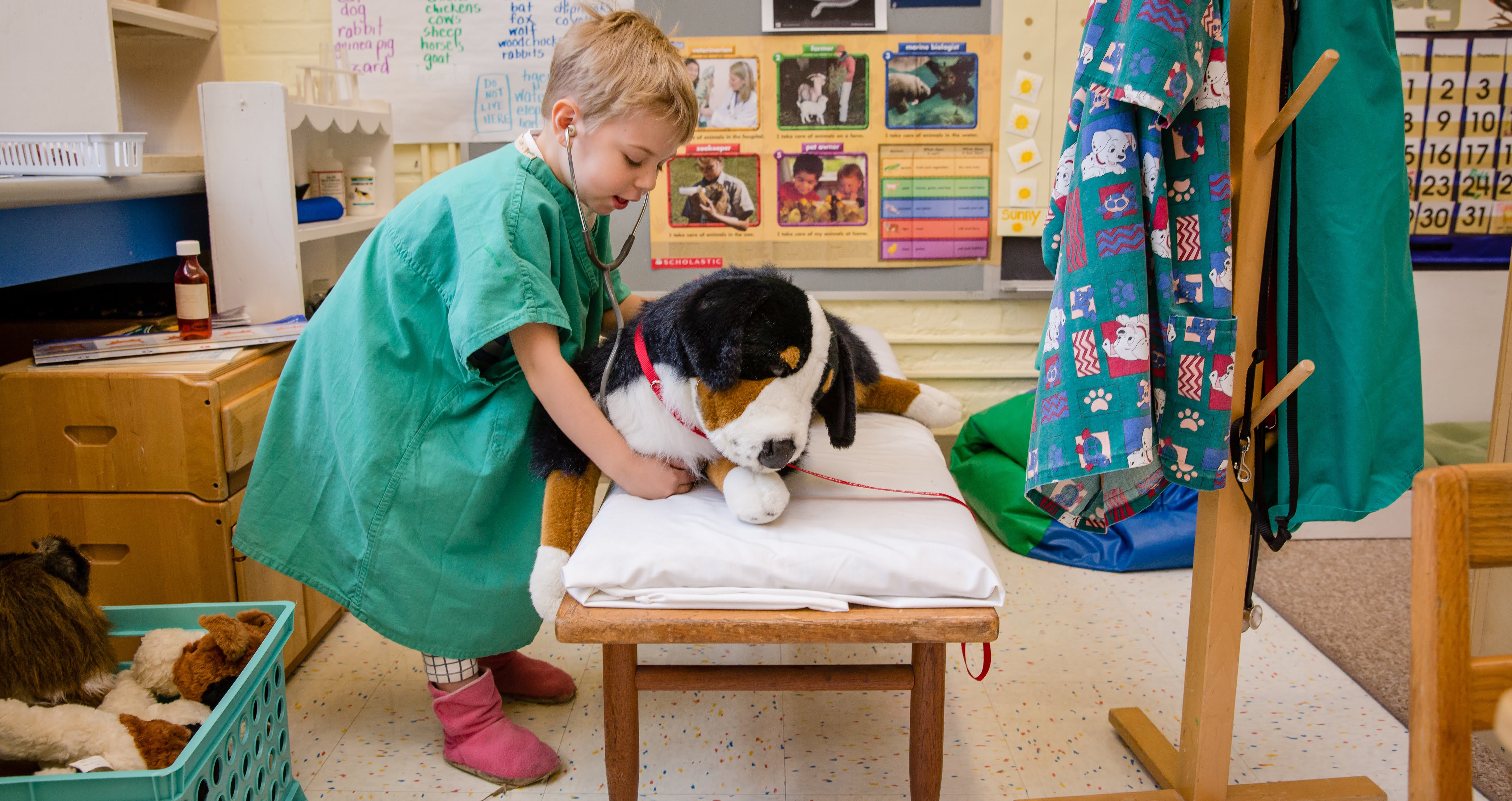 A student wearing scrubs examines a stuffed animal with a stethescope