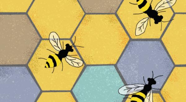 Graphic representation of a honeycomb with three bees on it.